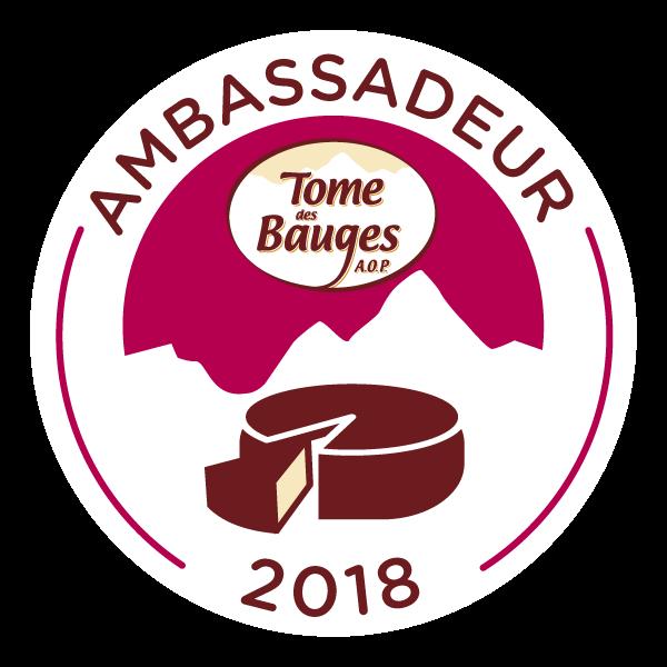 logotdb-ambassadeur-2018-295